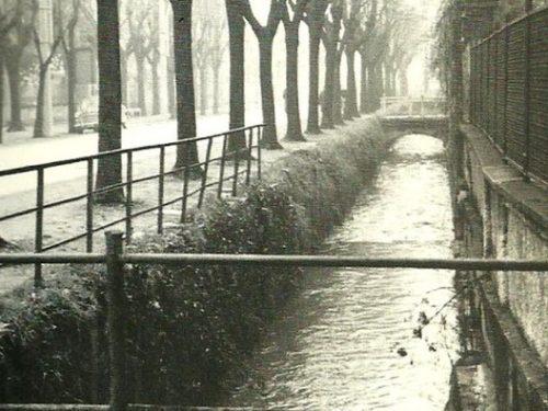 Le rogge Trevigliesi (Gianni Chiari 1982)