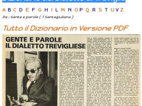 ( File PDF ) Dizionario del Dialetto di Treviglio